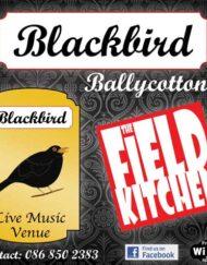 Corriboard_blackbird